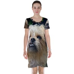 Brussels Griffon Short Sleeve Nightdress