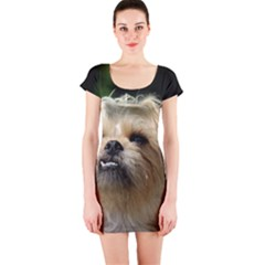 Brussels Griffon Short Sleeve Bodycon Dress