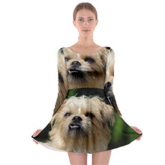 Brussels Griffon Long Sleeve Skater Dress
