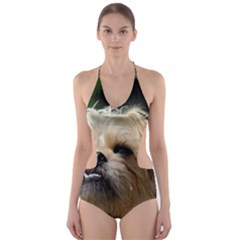 Brussels Griffon Cut Out One Piece Swimsuit