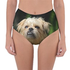 Brussels Griffon Reversible High Waist Bikini Bottoms