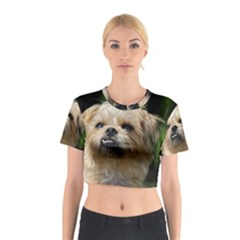 Brussels Griffon Cotton Crop Top