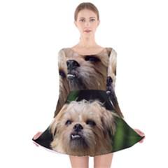 Brussels Griffon Long Sleeve Velvet Skater Dress