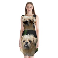 Brussels Griffon Sleeveless Chiffon Dress