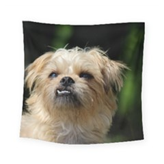 Brussels Griffon Square Tapestry (small)