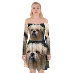 Brussels Griffon Off Shoulder Skater Dress