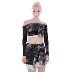 Neapolitan Mastiff Laying Off Shoulder Top With Skirt Set