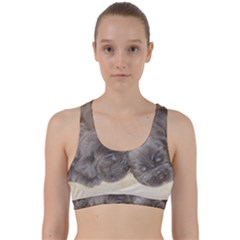 Neapolitan Pups Back Weave Sports Bra