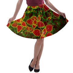 Flower Red Nature Garden Natural A Line Skater Skirt