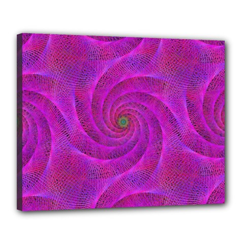 Pink Abstract Background Curl Canvas 20  X 16