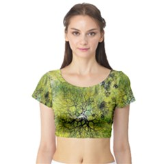 Abstract Spots Lines Short Sleeve Crop Top (tight Fit)