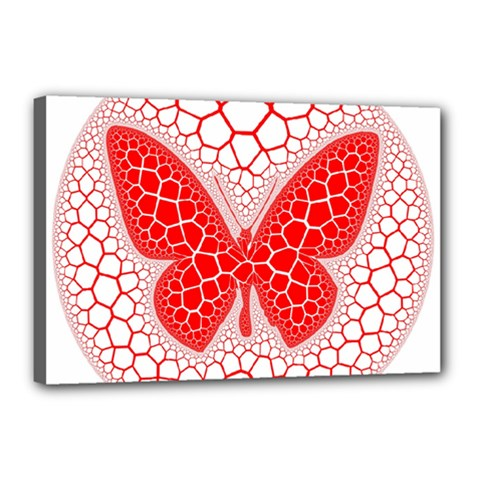 Butterfly Canvas 18  X 12