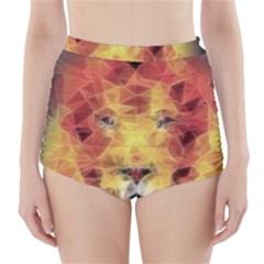 Fractal Lion High Waisted Bikini Bottoms
