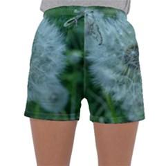 Dsc05992 Sleepwear Shorts
