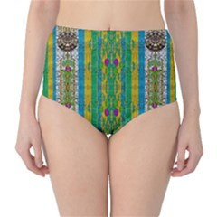 Rainbows Rain In The Golden Mangrove Forest High Waist Bikini Bottoms