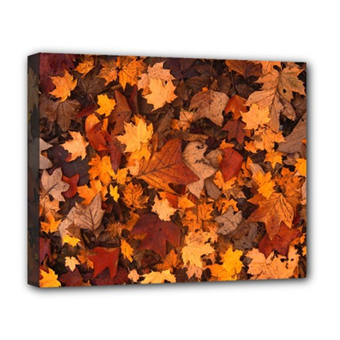 Fall Foliage Autumn Leaves October Deluxe Canvas 20  X 16
