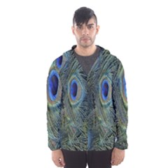 Peacock Feathers Blue Bird Nature Hooded Wind Breaker (men)