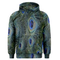 Peacock Feathers Blue Bird Nature Men s Pullover Hoodie