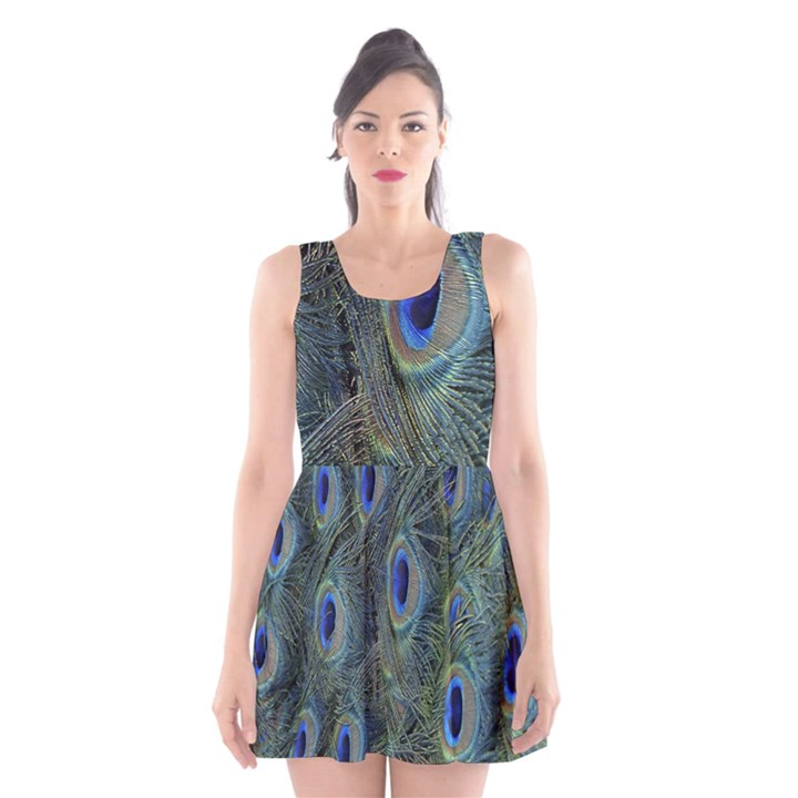 Peacock Feathers Blue Bird Nature Scoop Neck Skater Dress