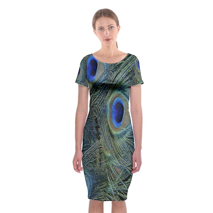 Peacock Feathers Blue Bird Nature Classic Short Sleeve Midi Dress