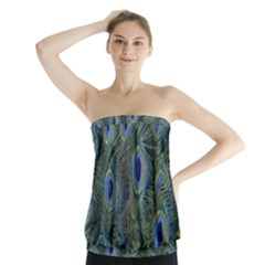Peacock Feathers Blue Bird Nature Strapless Top