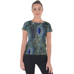 Peacock Feathers Blue Bird Nature Short Sleeve Sports Top
