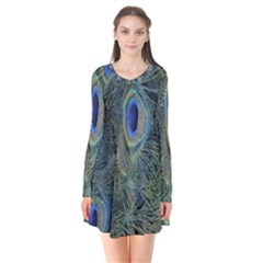 Peacock Feathers Blue Bird Nature Flare Dress