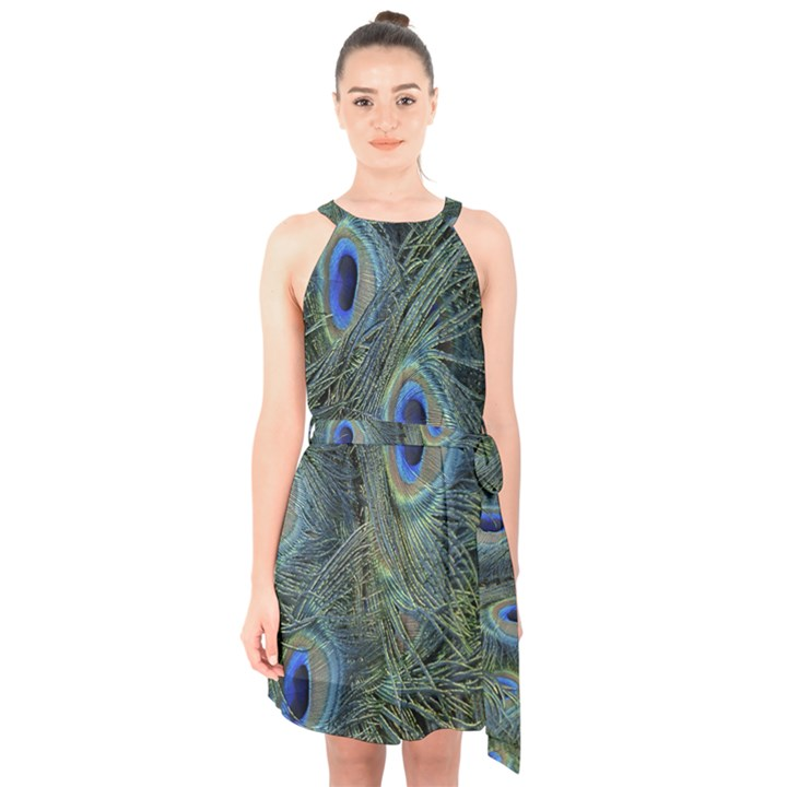 Peacock Feathers Blue Bird Nature Halter Collar Waist Tie Chiffon Dress