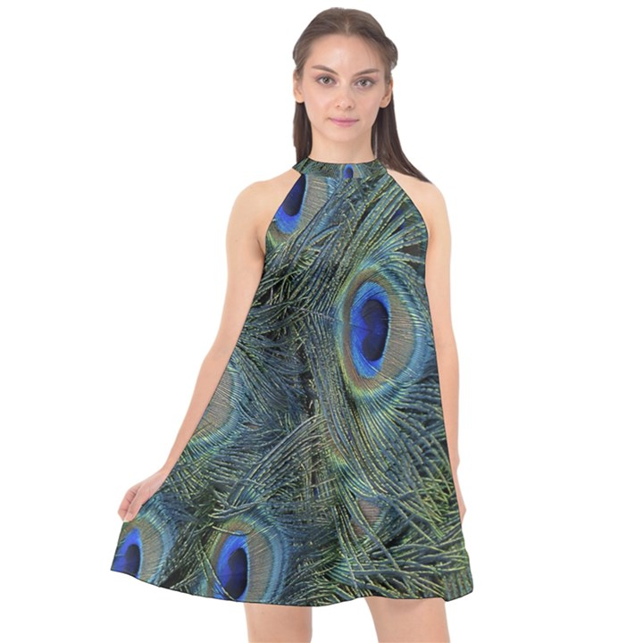 Peacock Feathers Blue Bird Nature Halter Neckline Chiffon Dress