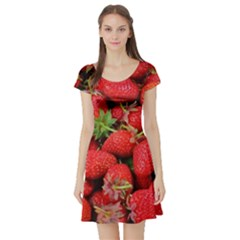 Strawberries Berries Fruit Short Sleeve Skater Dress