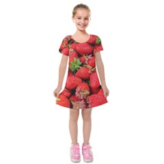 Strawberries Berries Fruit Kids  Short Sleeve Velvet Dress
