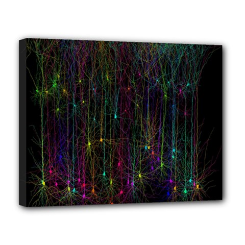 Brain Cell Dendrites Canvas 14  X 11