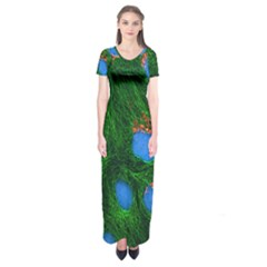 Fluorescence Microscopy Green Blue Short Sleeve Maxi Dress
