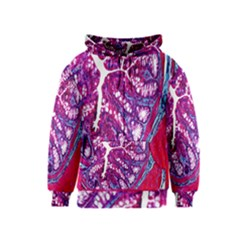 Histology Inc Histo Logistics Incorporated Masson s Trichrome Three Colour Staining Kids  Zipper Hoodie