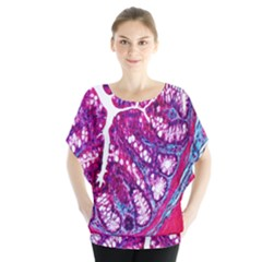 Histology Inc Histo Logistics Incorporated Masson s Trichrome Three Colour Staining Blouse
