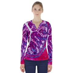 Histology Inc Histo Logistics Incorporated Masson s Trichrome Three Colour Staining V Neck Long Sleeve Top