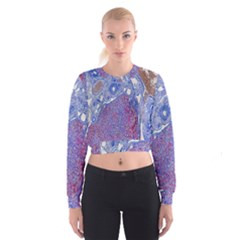 Histology Inc Histo Logistics Incorporated Human Liver Rhodanine Stain Copper Cropped Sweatshirt
