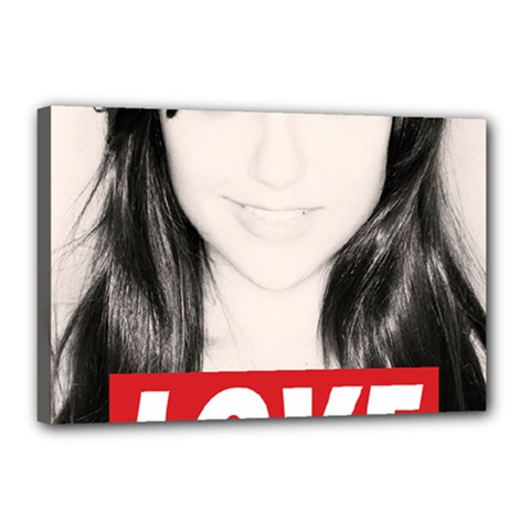 Sasha Grey Love Canvas 18  X 12