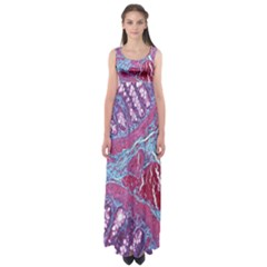 Natural Stone Red Blue Space Explore Medical Illustration Alternative Empire Waist Maxi Dress