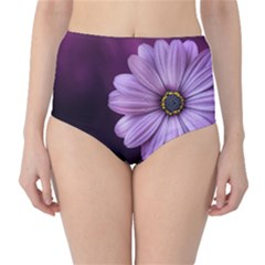Purple Flower High Waist Bikini Bottoms
