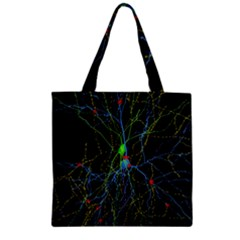 Synaptic Connections Between Pyramida Neurons And Gabaergic Interneurons Were Labeled Biotin During Zipper Grocery Tote Bag