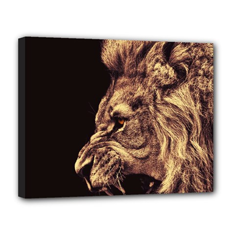 Angry Male Lion Gold Canvas 14  X 11