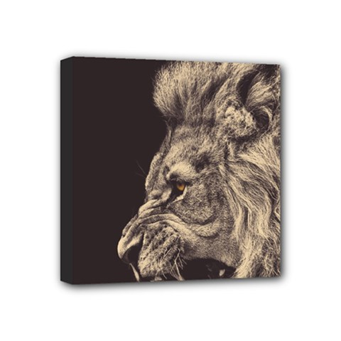 Angry Male Lion Mini Canvas 4  X 4