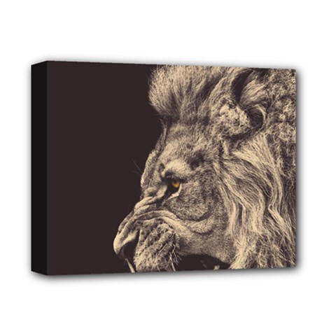 Angry Male Lion Deluxe Canvas 14  X 11