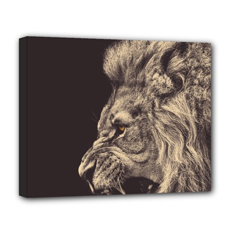 Angry Male Lion Deluxe Canvas 20  X 16