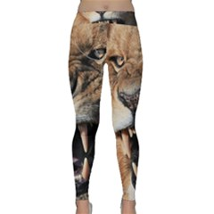 Male Lion Angry Classic Yoga Leggings