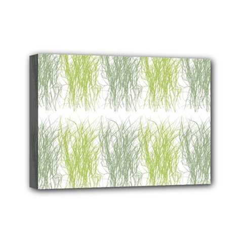 Weeds Grass Green Yellow Leaf Mini Canvas 7  X 5