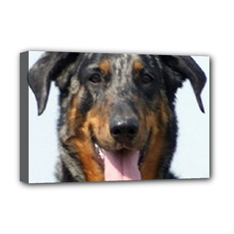 Harlequin Beauceron Deluxe Canvas 18  X 12