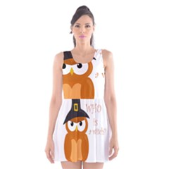 Halloween Orange Witch Owl Scoop Neck Skater Dress
