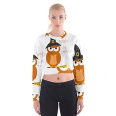 Halloween Orange Witch Owl Cropped Sweatshirt